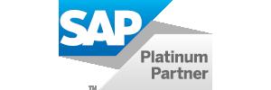SAP_300_100